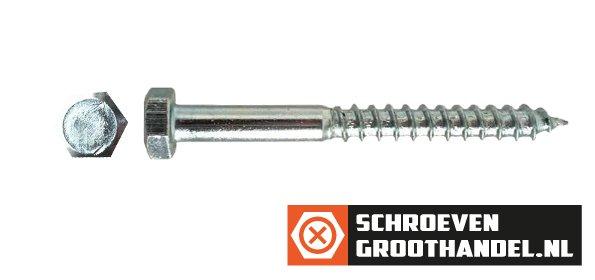 Houtdraadbouten M6 verzinkt 6x20 mm 200 stuks