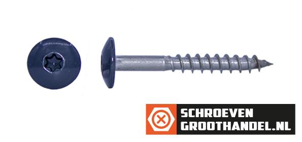Schroeven voor Trespa® / HPL-platen 4,8x60 mm RAL7016 antracietgrijs RVS A2 TORX 100 stuks