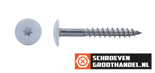 Schroeven voor Trespa® / HPL-platen 4,8x38 mm RAL7035 lichtgrijs RVS A2 TORX 100 stuks